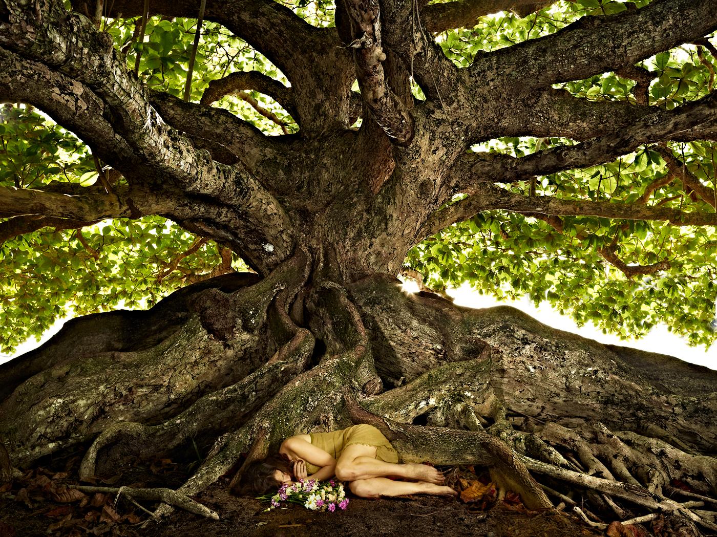 Behind the scenes at the Banyan Tree