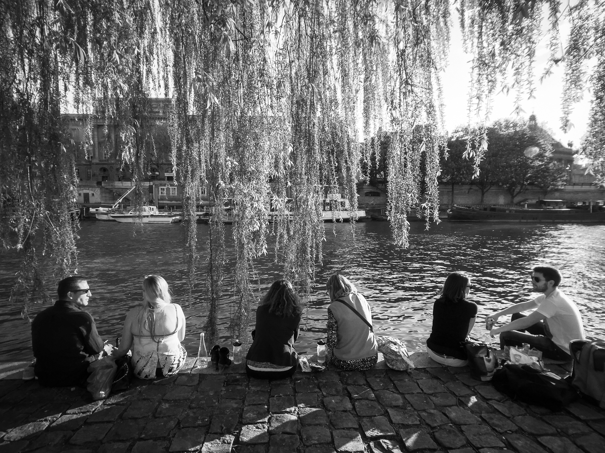 Friends sit under the branches of a Weeping Willow tree on the Seine River in Paris, France.
