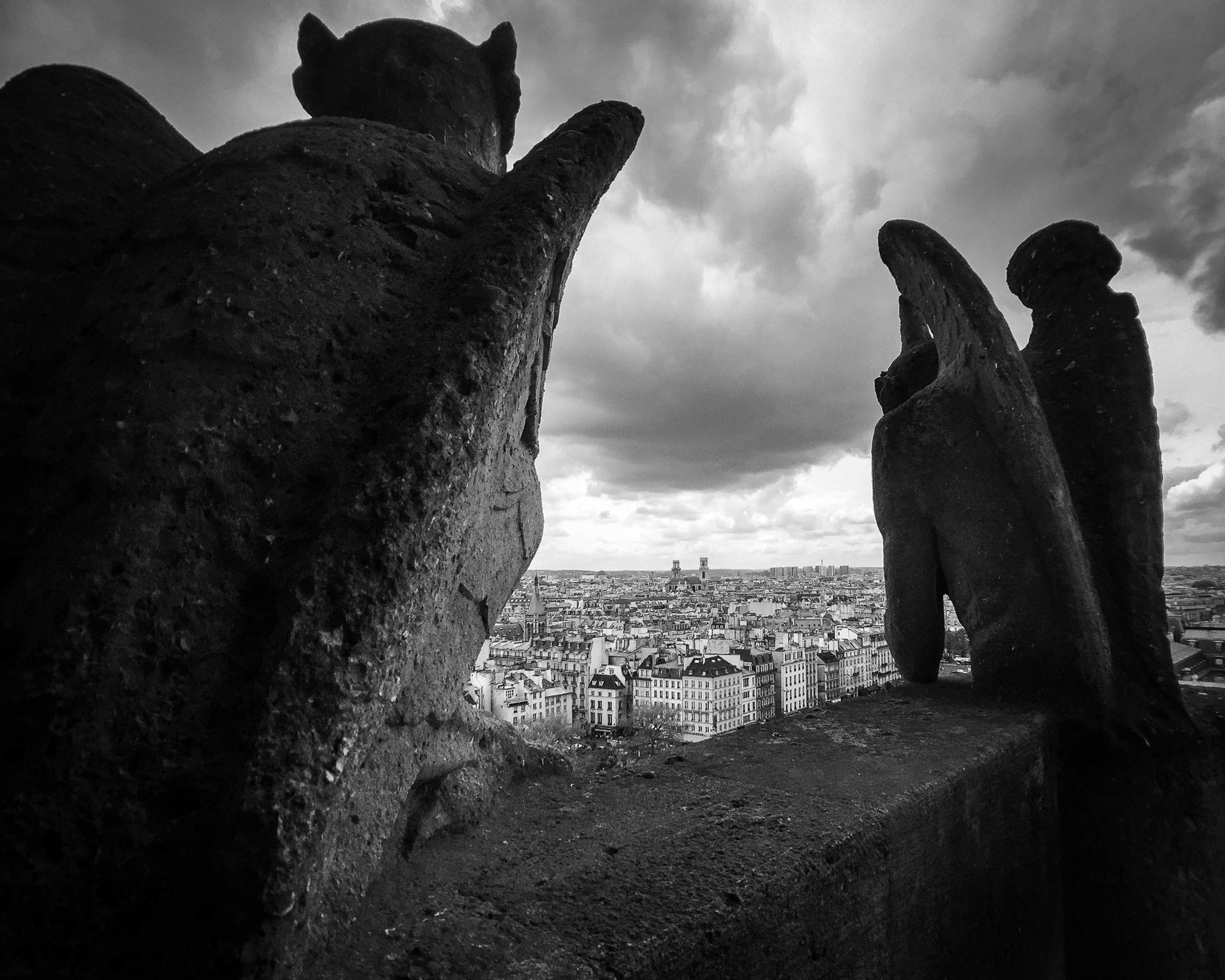 The backs of two gargoyles as see from the top of Notre-Dame Cathedral in Paris, France.